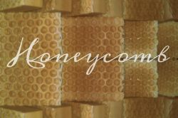 Honeycomb Goat Milk Soap